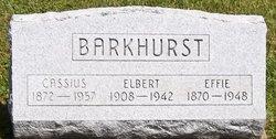Effie Chestina <i>Hann</i> Barkhurst