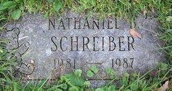 Nathaniel B Schreiber