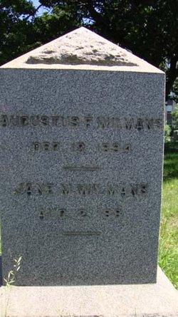 Jane M. <i>Ferguson</i> Wilmans