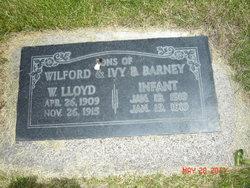 Lloyd Wilford Barney