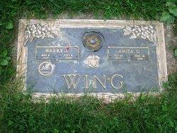 Anita D. <i>Hawkins</i> Wing