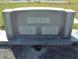 Lillie Ann Penelope <i>Etheredge</i> Hicks