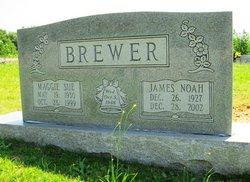 James Noah Brewer