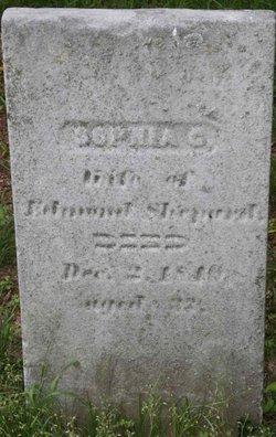 Sophia D Shepard