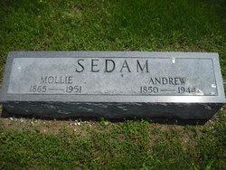 Andrew Sedam