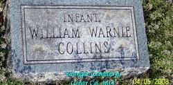 William Warnie Collins
