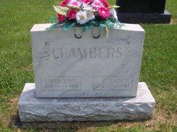 Sarah Ethel <i>Scott</i> Chambers