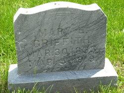 Mary E Griffith