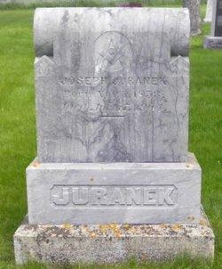 Joseph H Juranek