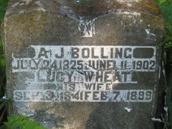 Lucy <i>Wheat</i> Bolling