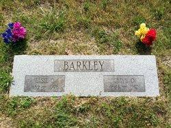 Elsie Olena <i>Jenkins</i> Barkley