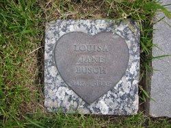 Louisa Jane Busch