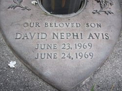 David Nephi Avis
