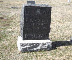 David S Brown