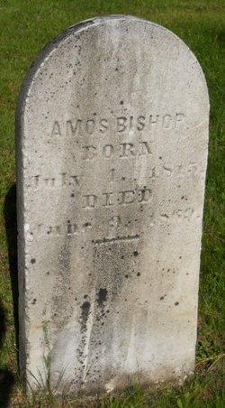 Amos Bishop