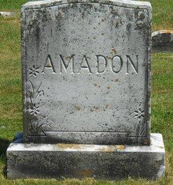 Henry Ansel Amadon