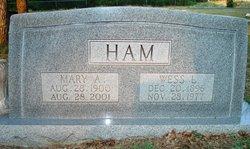 Mary Ann <i>Swan</i> Ham
