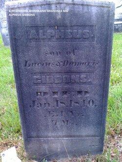 Alpheus Gibbons