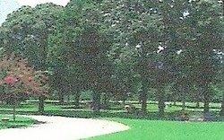 Still Waters Memorial Garden