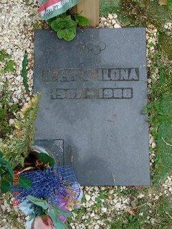 Ilona Elek
