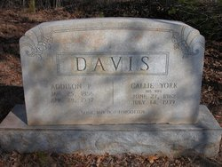 Callie <i>York</i> Davis