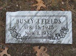 Busey J. Fields