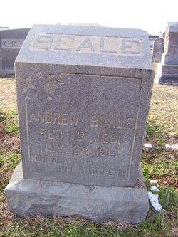Andrew Beale