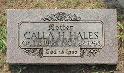 Calla <i>Kellett</i> Hales