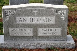 Callie <i>Flye</i> Anderson