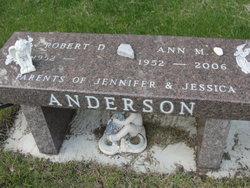 Ann M Anderson