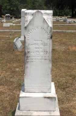 Everett Gill Atkinson