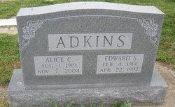 Edward Sterling Adkins