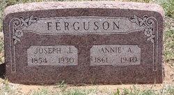 Nancy Ann Annie Ferguson