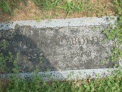 Ruth T <i>Seybold</i> Caywood