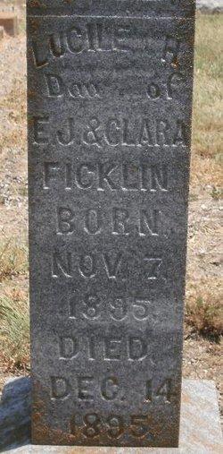 Lucille H. Ficklin