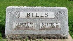 Nettie C. <i>Boice</i> Bills