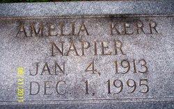 Amelia <i>Kerr</i> Napier