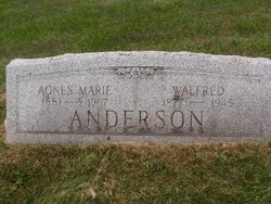 Walfred Anderson