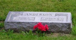 Andrew W Anderson