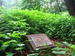 Corwin Burial Ground