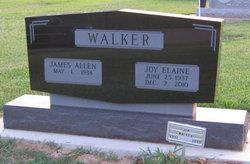 Joy Elaine <i>Zevely</i> Walker