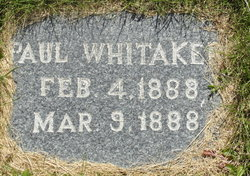 Paul Whitaker