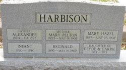Mary <i>Pelton</i> Harbison