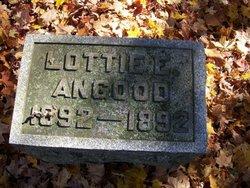 Lottie Eda Angood