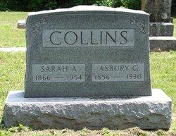 Sarah Amanda <i>Herron</i> Collins