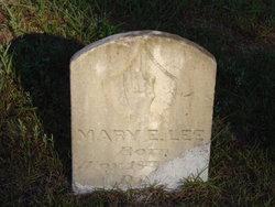 Mary Estell <i>Wilson</i> Lee