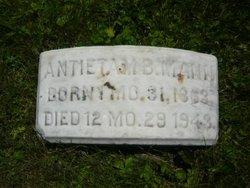 Antietam Burnside Mann