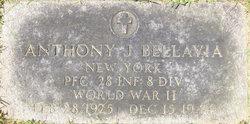 PFC Anthony J Bellavia