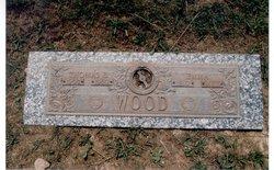Emma <i>Clark</i> Wood