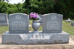 Joseph D Lewis